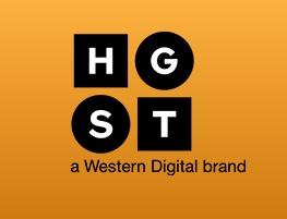 hgst-logo.jpg